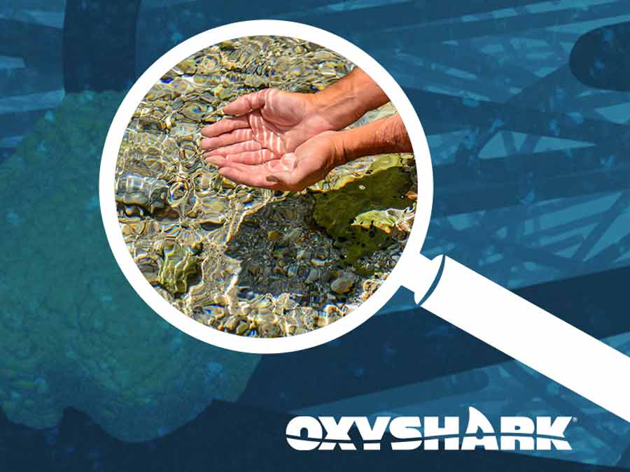 OxyShark's Take on Water Quality
